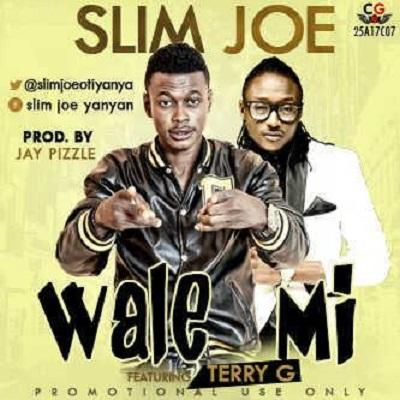 Wale ft. Terry G(Single)