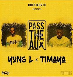 Pass The Aux Remix