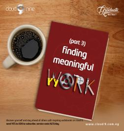 Finding meaningful work